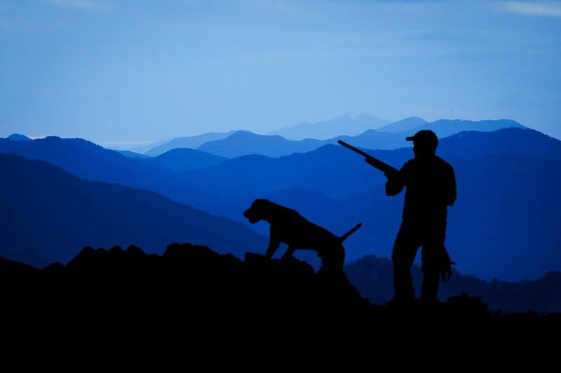 going hunt with dogs